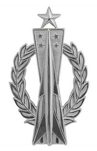 Air Force Badge: Missile Operator: Senior - regulation size