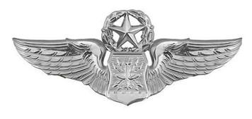 Air Force Badge: Navigator: Master - regulation size