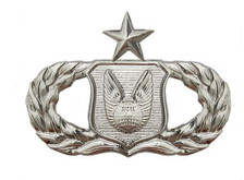 Air Force Badge: Operations Support: Senior - regulation size