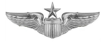 Air Force Badge: Pilot: Senior - regulation size