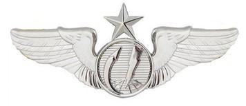 Air Force Badge: Remotely Piloted Aircraft Sensor: Senior - Regulation size