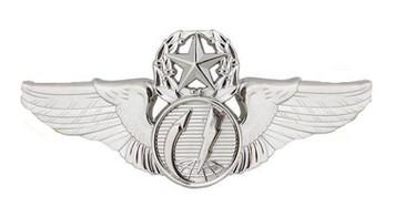 Air Force Badge: Remotely Piloted Aircraft Sensor: Master - Regulation size