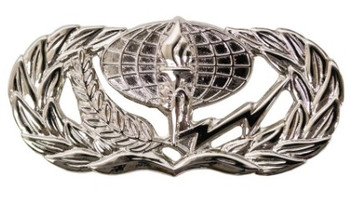 Air Force Badge: Services - regulation size