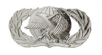 Air Force Badge: Supply Fuels - regulation size