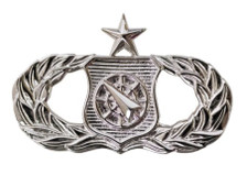 Air Force Badge: Weapons Controller: Senior - regulation size