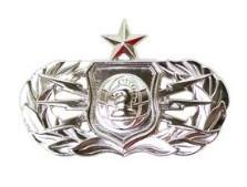 Air Force Badge: Senior Information Operations Officer - regulation size