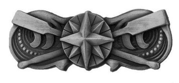 Coast Guard Badge: Coxswain - regulation size