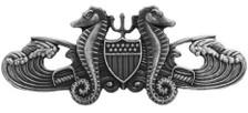 Coast Guard Badge: Enlisted Port Security - regulation size