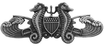 Coast Guard Badge: Enlisted Port Security - regulation size