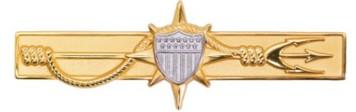 Coast Guard Badge: Marine Safety Officer - regulation size