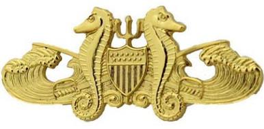 Coast Guard Badge: Officer Port Security - regulation size