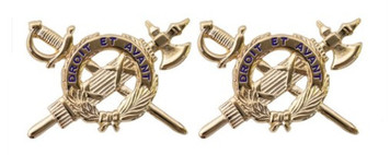 Army Officer Branch of Service Collar Device: Inspector General