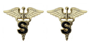 Army Officer Branch of Service Collar Device: Medical S - gold plated