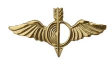 Navy Collar Device: Aerographer- each