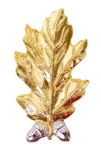 Navy Collar Device: Dental - gold- each