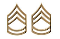 Army Chevron: Sergeant First Class - 22k gold plated