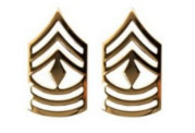 Army Chevron: First Sergeant - 22k gold plated