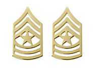 Army Chevron: Sergeant Major - 22k gold plated