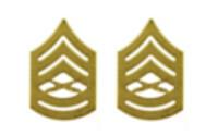Marine Corps Chevron: Gunnery Sergeant - satin gold- pair