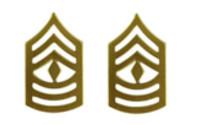 Marine Corps Chevron: First Sergeant - satin gold- pair