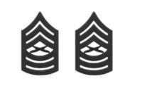 Marine Corps Chevron: Master Sergeant - black metal, solid brass- pair