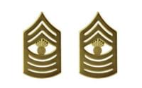 Marine Corps Chevron: Master Gunnery Sergeant - satin gold- pair
