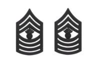 Marine Corps Chevron: Master Gunnery Sergeant - black metal, solid brass- pair