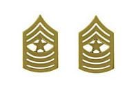 Marine Corps Chevron: Sergeant Major - satin gold