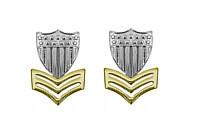 Coast Guard Metal Collar Device: E6 Petty Officer- pair