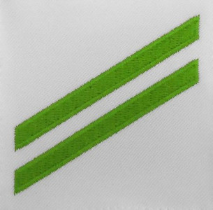 Navy E2 Rating Badge: Airman Apprentice - green chevrons on white poplin