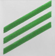 Navy E3 Rating Badge: Airman - green chevrons on white poplin