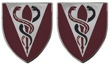 Army Crest: 325th Support Battalion- pair