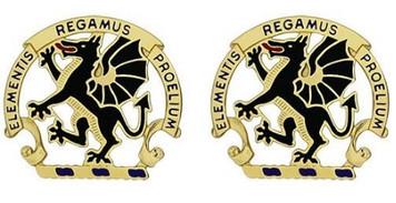 Army Crest: Chemical School - Elements Regamus Proelium- pair