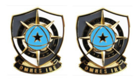 Army Crest: Cyber Protection Brigade- pair