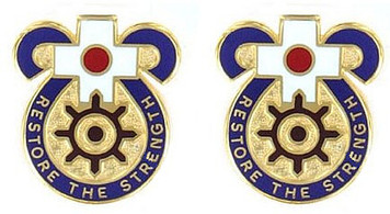 Army Crest: MEDDAC Japan - Restore The Strength- pair