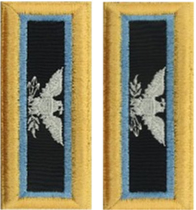 Army Colonel Shoulder Board- Inspector General – female
