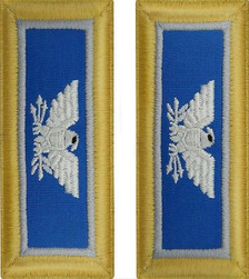 Army Colonel Shoulder Board- Military Intelligence