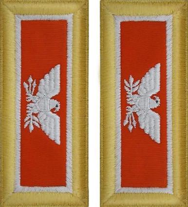 Army Colonel Shoulder Board- Signal