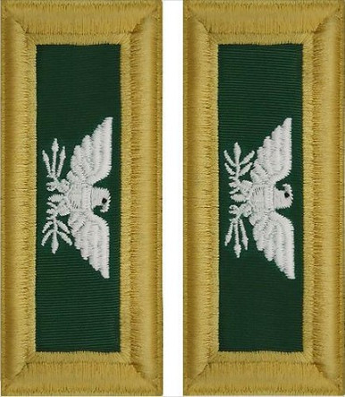 Army Colonel Shoulder Board- Special Forces