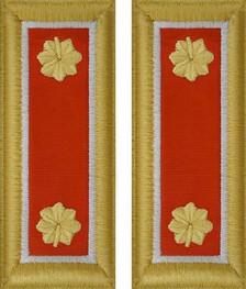 Army Major Shoulder Board- Signal