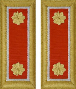 Army Major Shoulder Board- Signal