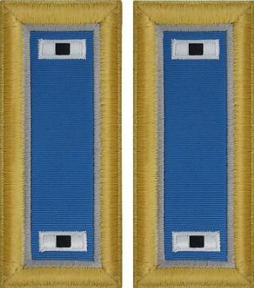 Army Warrant Officer 1 Shoulder Board- Military Intelligence – female