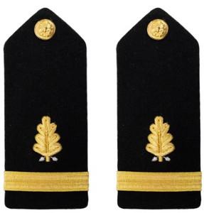 Navy Ensign Hard Shoulder Board- Dental Corps