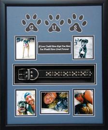 16 x 20 Pet Memorial Shadow Box Frame #7