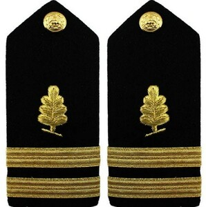 Navy Lieutenant Hard Shoulder Board- Medical Service – female
