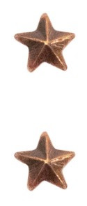 """Ribbon Attachment 3/16"""" One Star Bronze - pair"""