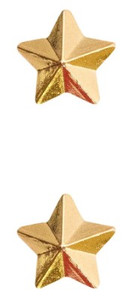 "Ribbon Attachment 5/16"" One Star Gold - pair"