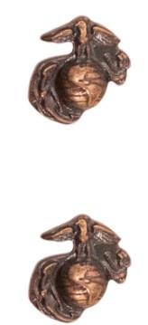 Ribbon Attachments Fleet Marine Force – bronze - pair