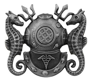 Navy Badge: Diving Medical Technician - regulation size