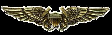 Navy Badge: Naval Flight Officer - regulation size